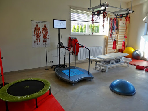 Euro PRM Ortopedická rehabilitácia postihuje ľudí počas alebo po ortopedickej liečbe Sekciatelovýchovneja zdravierehabilitačnejmedicíny