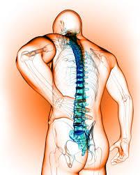 Fyzická rehabilitácia-fyzické starostlivosť o zdravie